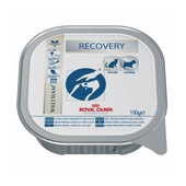 RECOVERY CAN CANE/GATTO V-DIET  4 pz (8 x 100g)